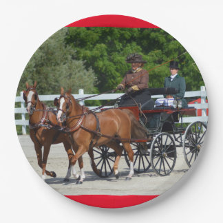 Walnut Hill Carriage Driving Show 2015 9 Inch Paper Plate