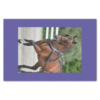Walnut Hill Carriage Driving Show 2015 Tissue Paper