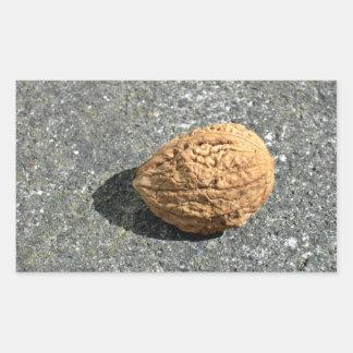 Walnut on a granule rectangular stickers