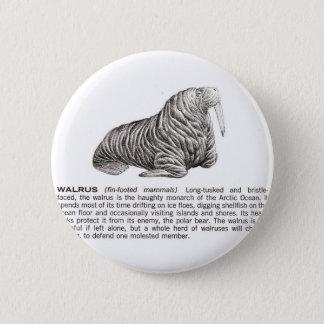 walrus 6 cm round badge
