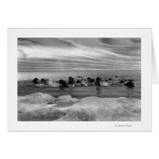Walrus among the Ice Floes in Bering Sea Card