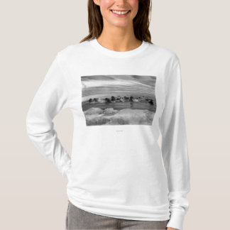 Walrus among the Ice Floes in Bering Sea T-Shirt