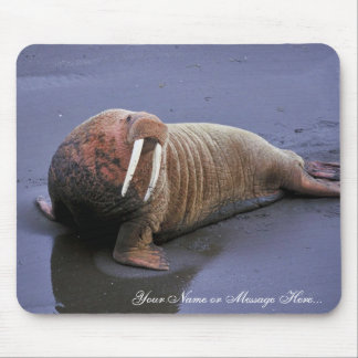Walrus at Togiak National Wildlife Refuge Mouse Mat