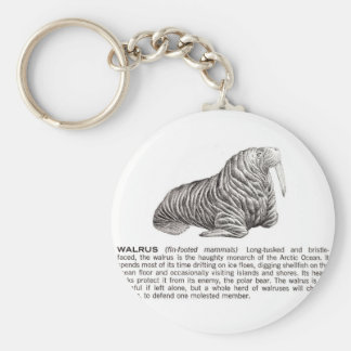 walrus key ring