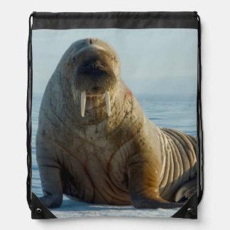 Walrus rests on summer sea ice drawstring bag