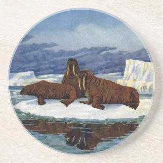 Walruses on an Ice Floe Beverage Coasters