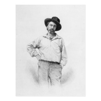 Walt Whitman, frontispiece to 'Leaves of Postcard