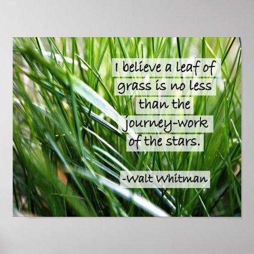 Walt Whitman Quote- Poster