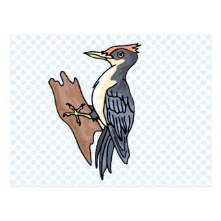 Wanda Woodpecker Postcard