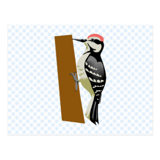 Wandell Woodpecker Postcard