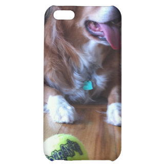 Wanna Play iPhone 5C Cases