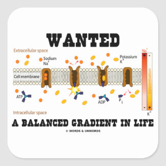 Wanted A Balanced Gradient In Life Na-K Pump Sticker