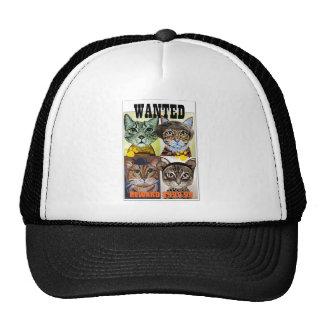 Wanted cat poster art cap