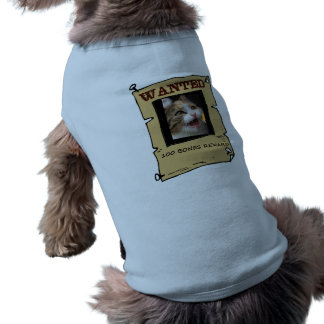 Wanted cat shirt