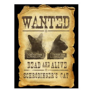 Wanted dead and alive Schroedinger s cat Post Card