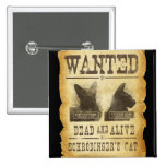 Wanted dead and alive.  Schroedinger's cat. Pinback Button