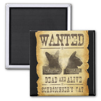 Wanted dead and alive.  Schroedinger's cat. Square Magnet