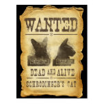 Wanted dead and alive.  Schroedinger's cat. Post Card