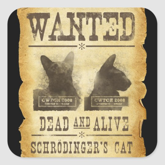 Wanted dead and alive. Schroedinger's cat. Square Sticker