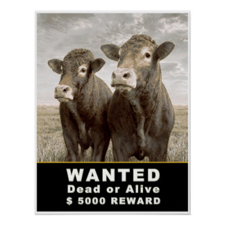 WANTED Dead or Alive $ 5000 REWARD Poster
