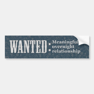 WANTED Meaningful overnight relationship Bumper Sticker