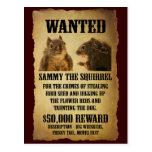 Wanted Poster with Squirrel Post Cards