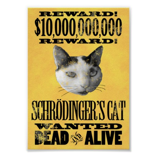 WANTED: SCHRODINGER'S CAT poster