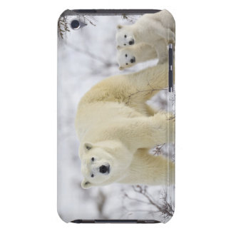 Wapusk National Park, Canada. Case-Mate iPod Touch Case