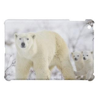 Wapusk National Park, Canada. iPad Mini Covers