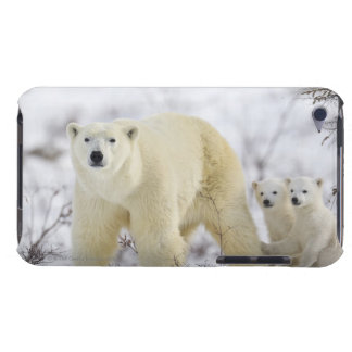 Wapusk National Park, Canada. iPod Touch Case