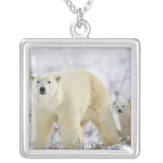Wapusk National Park, Canada. Silver Plated Necklace