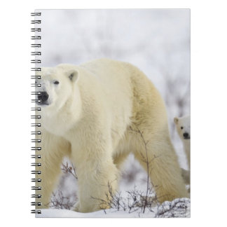 Wapusk National Park, Canada. Spiral Notebook