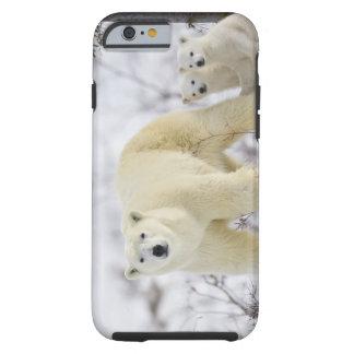 Wapusk National Park, Canada. Tough iPhone 6 Case
