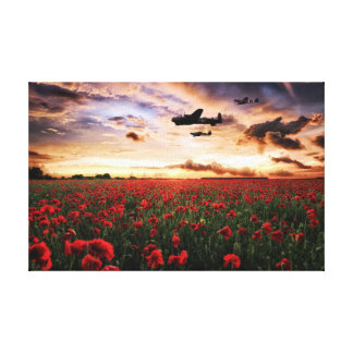 Warbirds Poppies Canvas Print
