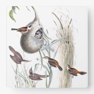 Warbler Birds Wildlife Animals Reeds Wall Clock