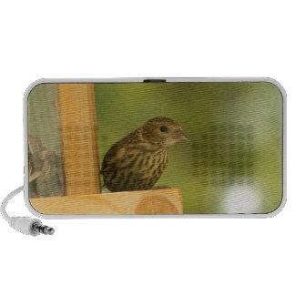 Warbler Having a Snack Mini Speaker