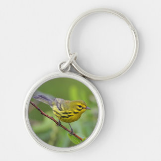 warbler Silver-Colored round key ring