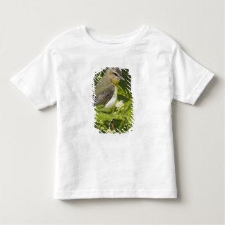 Warbling Vireo (Vireo gilvus) foraging on South Toddler T-Shirt