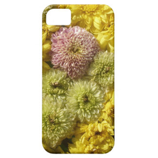 Warm Floral Texture iPhone 5 Covers