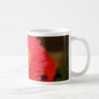 Warm Gerber Daisy Coffee Mugs