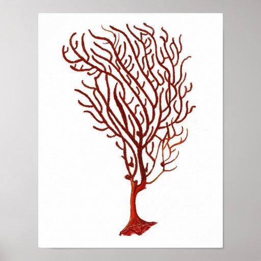 Warm Red Sea Coral no.5 Beach Wall Art Print
