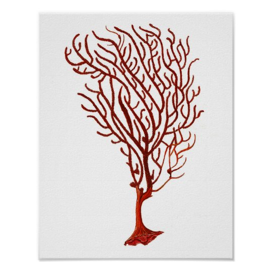 Warm Red Sea Coral no.5 Beach Wall Art Print