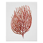 Warm Red Sea Coral no.9 Beach Wall Art Print