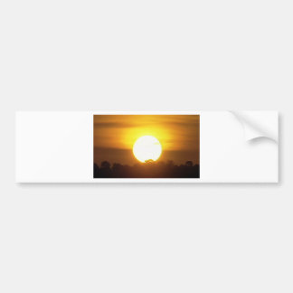 Warm Sunset Golden Horizons Bumper Sticker