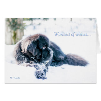 Warmest of wishes... card