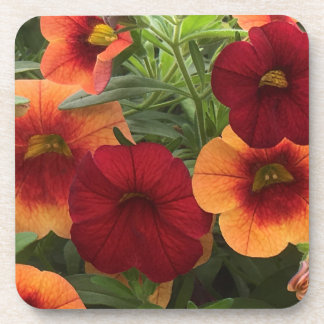 Warmth Of The Sun Floral Beverage Coasters