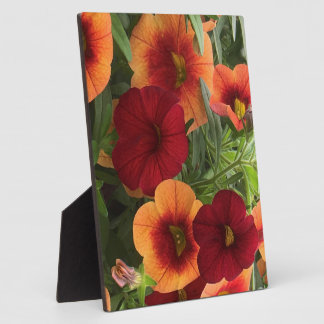 Warmth Of The Sun Floral Plaque