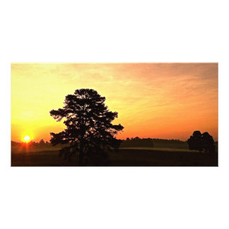 Warmth Sunrise Panoramic Picture Card
