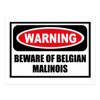 Warning BEWARE OF BELGIAN MALINOIS Postcard
