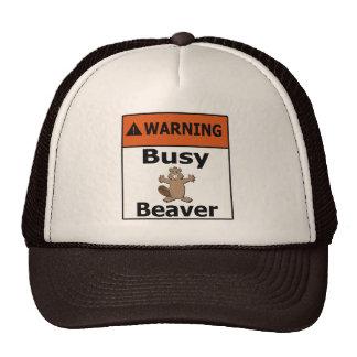 Warning Busy Beaver Cap